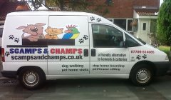 Scamps & Champs UK Franchise | Dog Walking & Pet Sitting Business