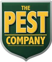 The Pest Company | Pest Extermination Business