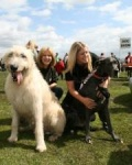 Thinking of starting your own dog walking business? Scamps & Champs are a very successful dog walking & pet care business
