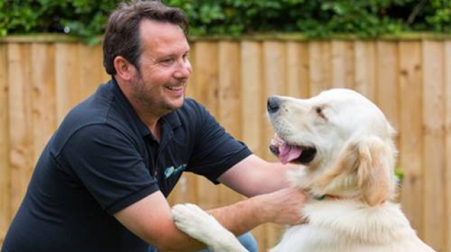 My Best Friend Business | Van-Based Dog Care Franchise